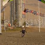 Todd - Dawn Landing Chile